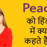 Peace hindi meaning